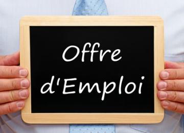 offre d emploi 3