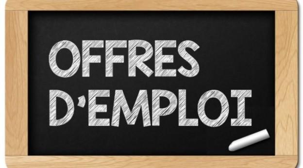 7 offres-emploi-750x450