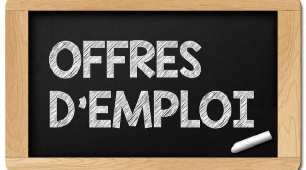 7-offres-emploi-750x450-600x333