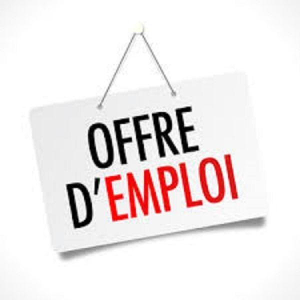 6 offre_d_emploi